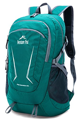 Venture Pal Day Budget Hiking Backpack