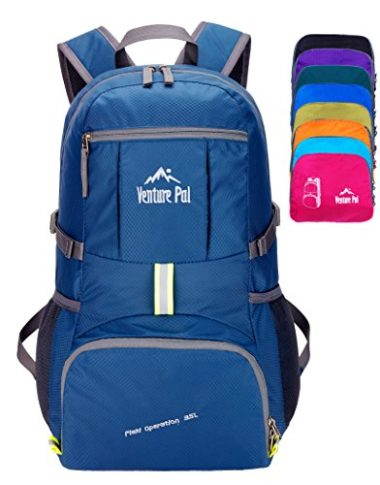 Venture Pal Hiking Backpack Under $100