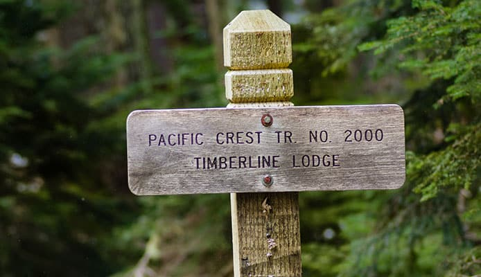 Experienced_vs._Rookie_PCT_Hikers