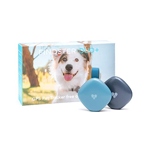 Findster Duo+ Collar Activity Monitor GPS Tracker For Dogs