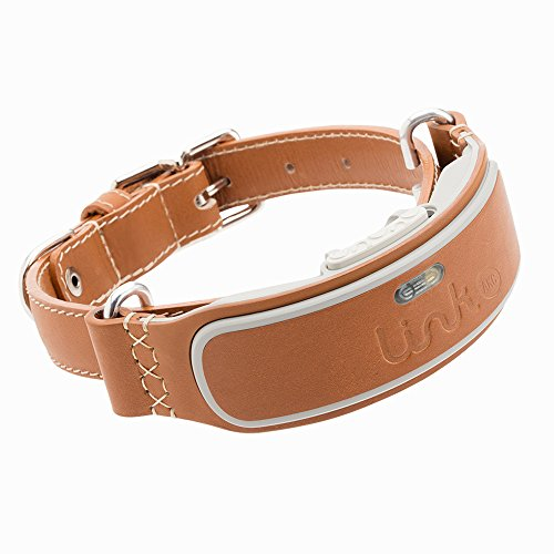 Link AKC Smart Collar GPS Tracker For Dogs