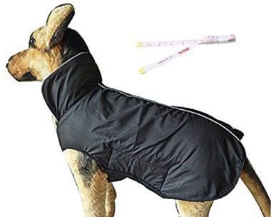 PETCEE Waterproof Outdoor Dog Coat