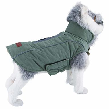 ThinkPet Padded Dog Coat