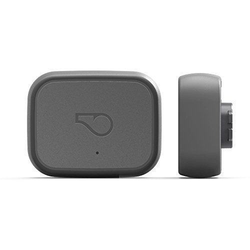 Whistle Go Health & Location GPS Tracker for Dogs