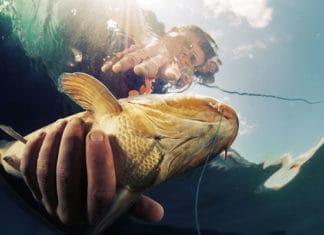 10_Best_Bass_Fishing_Florida_Locations