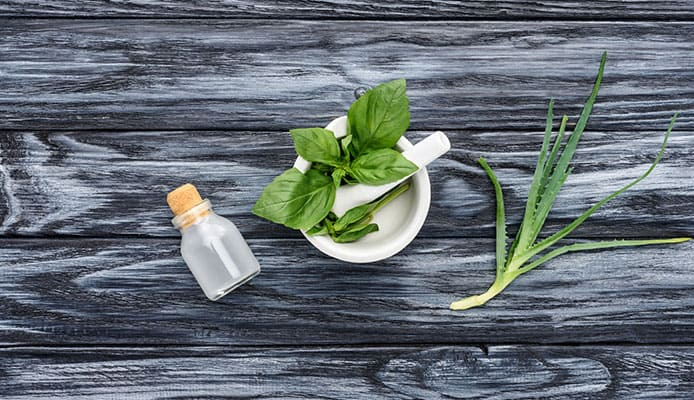 Aloe_Vera_For_Constipation_-_Simple_And_Easy_Cure