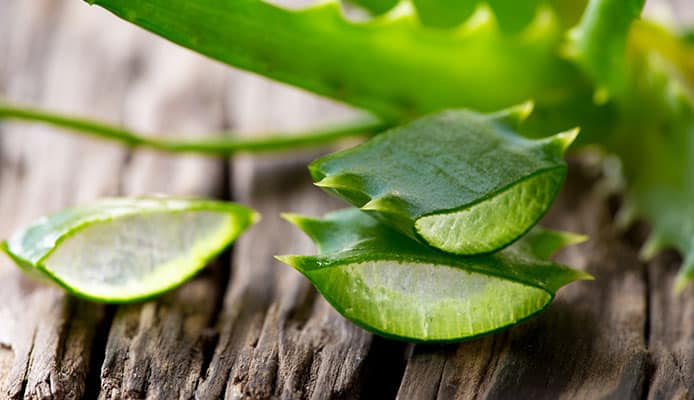 Aloe_Vera_For_Diabetes_The_Scientific_Proof_You_Were_Looking_For