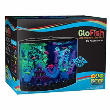 GloFish Aquarium Fish Tank