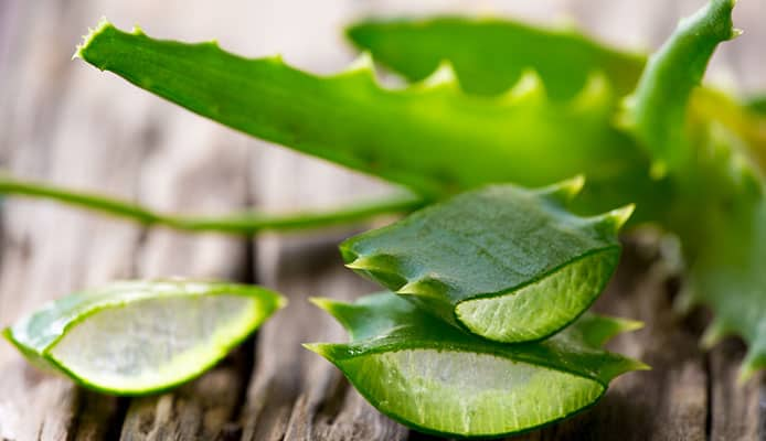 How_To_Use_Aloe_Vera_For_Cold_Sores