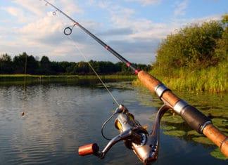 Jig_Fishing_Beginner_s_Guide