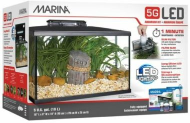 Marina LED 5 Gallon Glass Fish Tank
