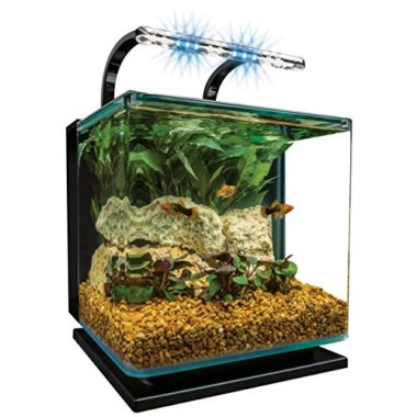 MarineLand Contour Glass Fish Tank