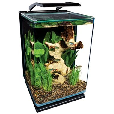 MarineLand 5 Gallon Portrait Glass Fish Tank