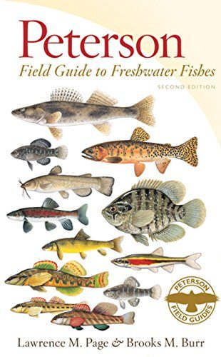 Peterson Field Guide To Freshwater Fishes Fishing Book