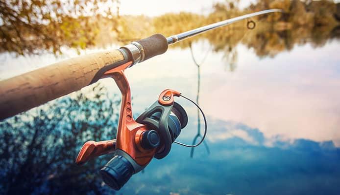Best_Reels_For_Stripper_Fishing