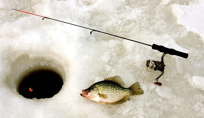 How_To_Choose_Crappie_Rod_And_Reel_Combo