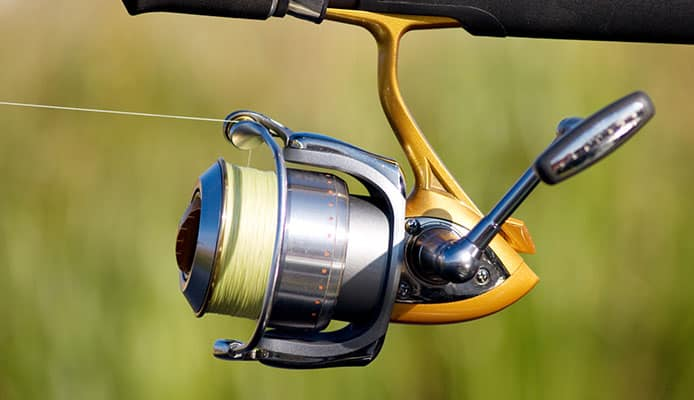 How_To_Choose_Daiwa_Spinning_Reel