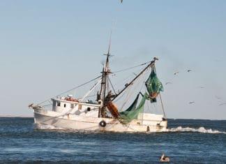 North_Carolina_Fishing_Guide_For_Sucess