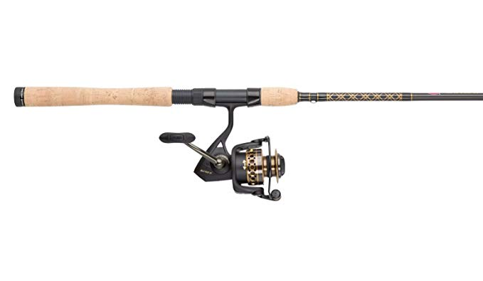 Penn Battle II Bass Rod And Reel Combo