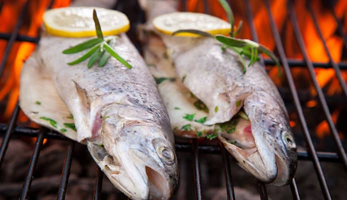 What_fish_is_best_for_grilling