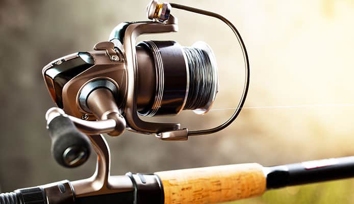 Why_Choose_A_Daiwa_Spinning_Reel