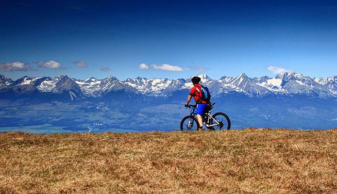Mountain_Bike_Shorts