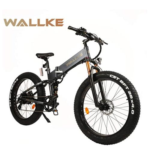 W Wallke Folding Electric Mountain Bike