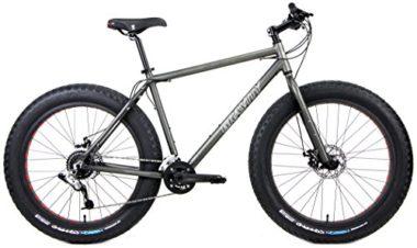 Gravity Fat Mountain Bike