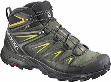 Salomon Quest 4D 2 GTX Hiking Boots