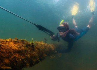 20_Best_Spearfishing_Techniques