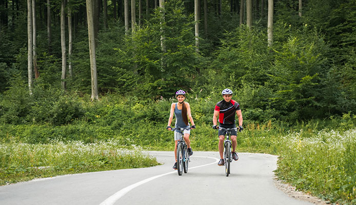 25_Most_Important_Bicycle_Road_Rules