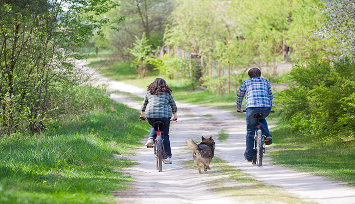 Biking_With_Dog_10_Tips_For_Easy_Training