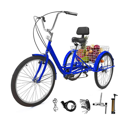 Eosaga Adult Tricycle