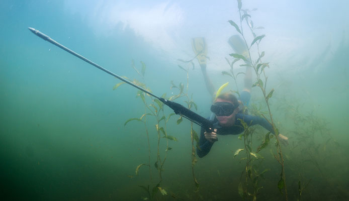 How_do_I_get_better_at_spearfishing_