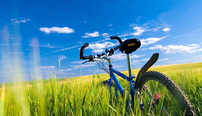 How_do_I_plan_a_bike_trip_