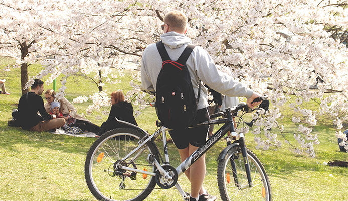 10_Best_Routes_For_Biking_In_Japan
