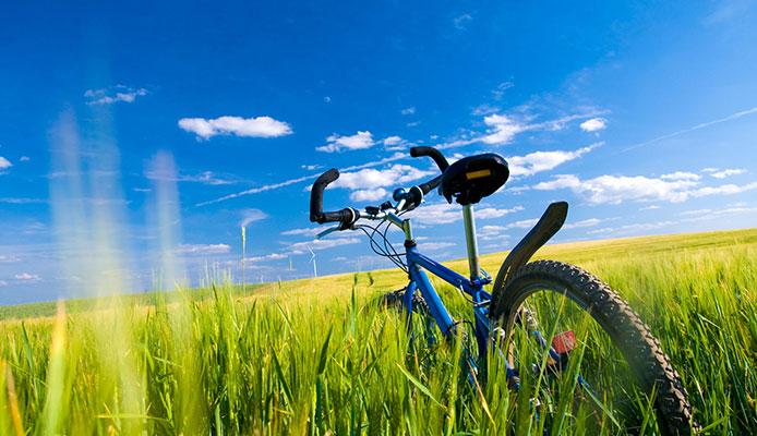 Bike_Fenders