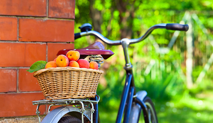Can_You_Fit_A_Basket_To_Any_Bike_