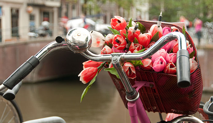 How_To_Choose_Bike_Bells