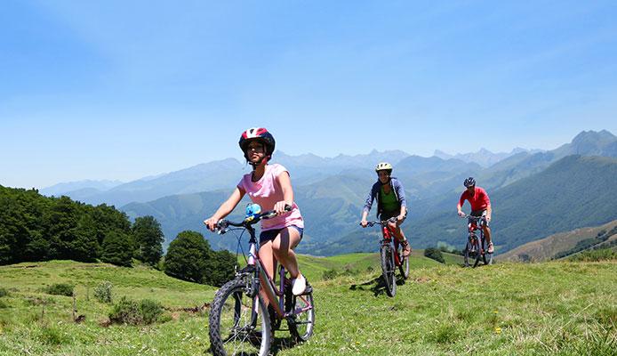 Mountain_Bike_Suspension_Forks