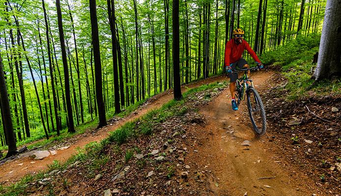 Are_Gravel_Bikes_Worth_It_