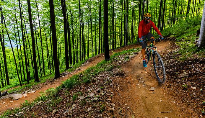 How_To_Choose_Trail_Bike