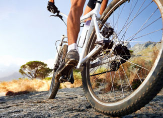 Road_Bike_vs_Mountain_Bike_Comparison_Guide