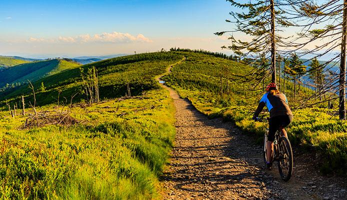 Trail_Bikes