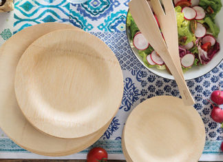 Veneerware_Bamboo_Compostable_Plates_Review